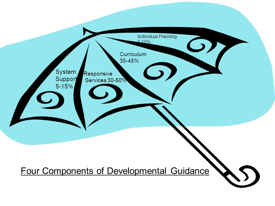 Four Components of Developmental Guidance