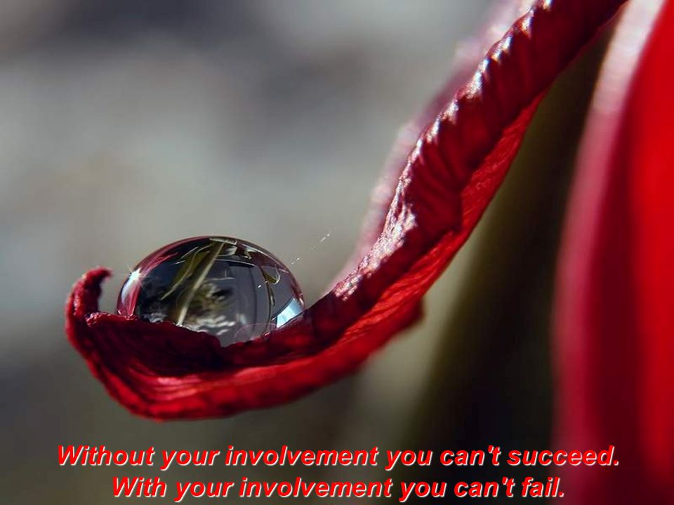 Without your involvement you can t succeed.