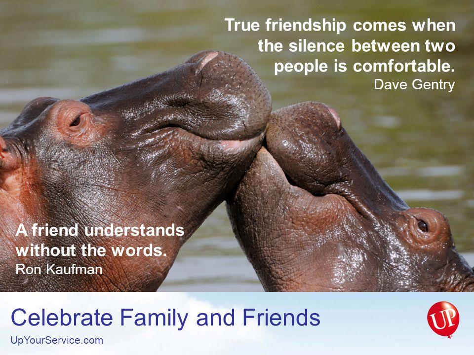 A friend understands without the words. Ron Kaufman