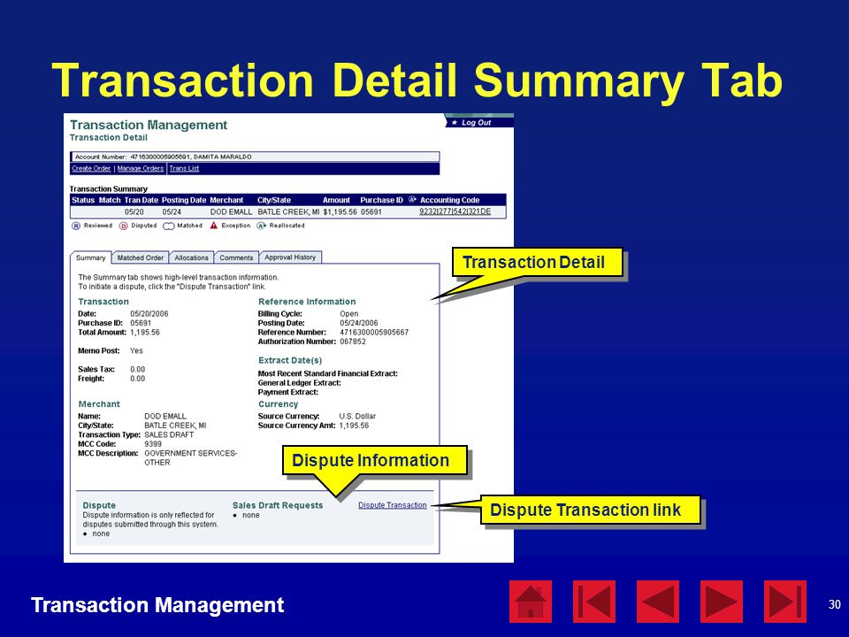 Transaction Detail Summary Tab