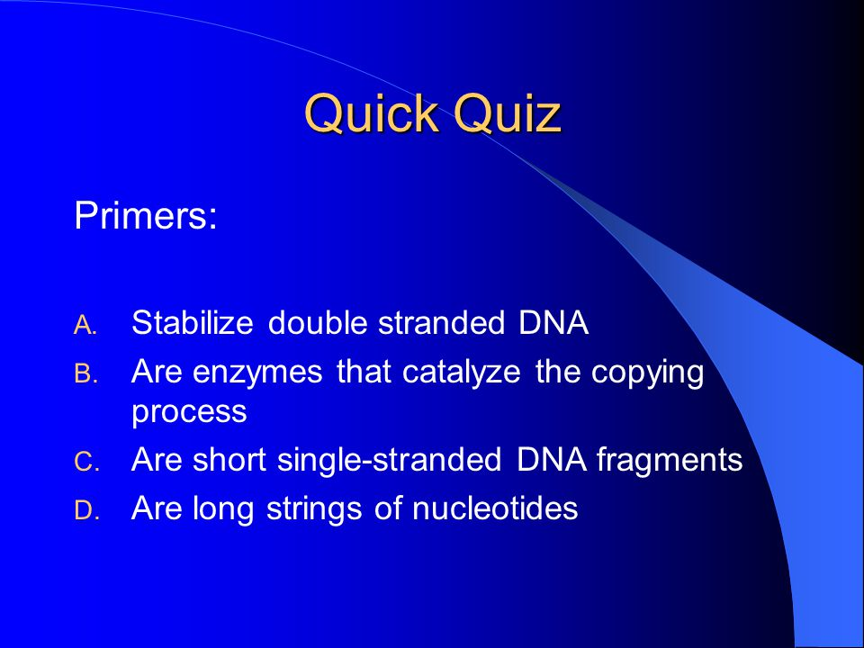 Quick Quiz Primers: Stabilize double stranded DNA