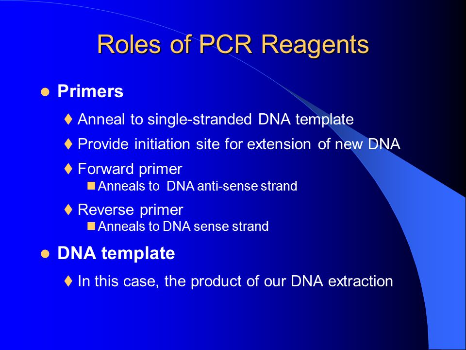 Roles of PCR Reagents Primers DNA template