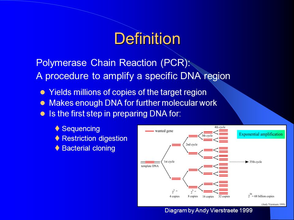 Definition Polymerase Chain Reaction (PCR):