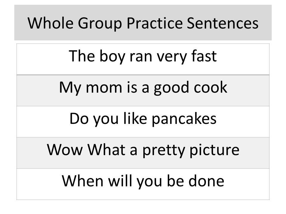 Whole Group Practice Sentences