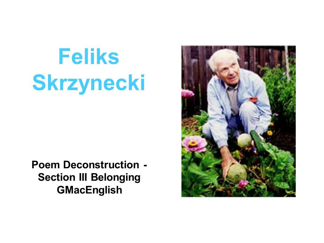 belonging feliks skrzynecki essay Skrzynecki's poems 'migrant hostel' and 'feliks skrzynecki' essay  belonging is a complex, multi-faceted concept encompassing a wide range of different aspects - skrzynecki's poems 'migrant hostel' and 'feliks skrzynecki' essay introduction the need to belong to family and culture is a universal human need which provides a sense of value and emotional stability, and in many respects forges.