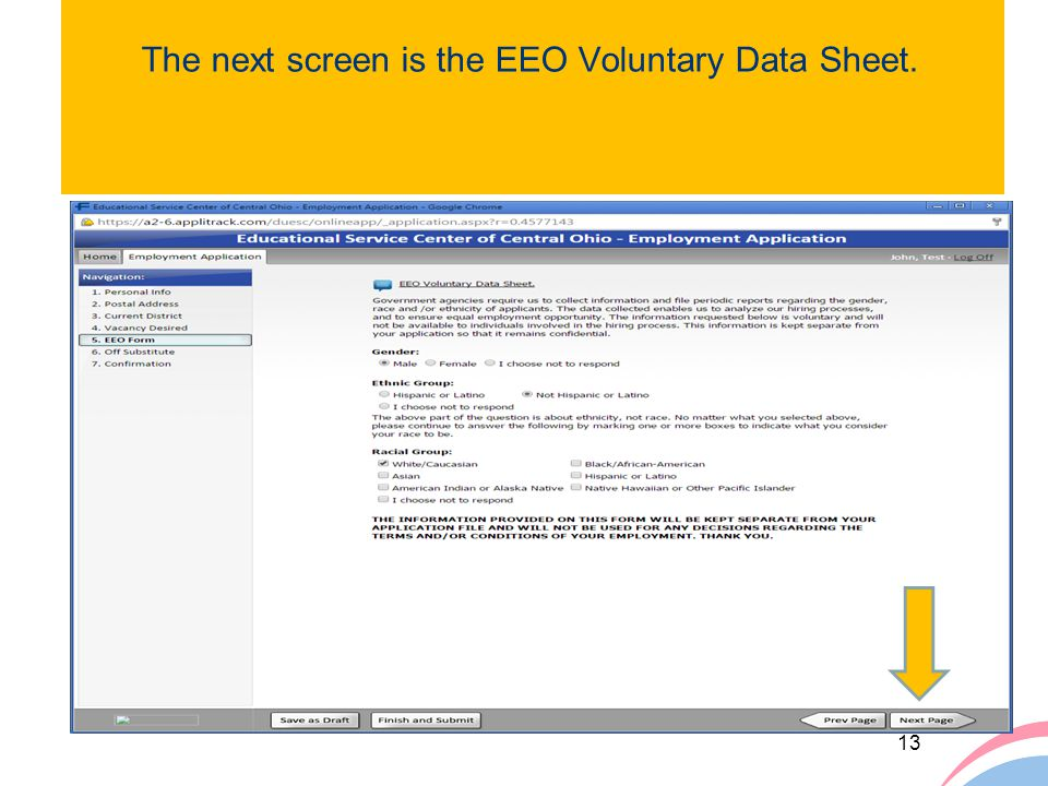 The next screen is the EEO Voluntary Data Sheet.