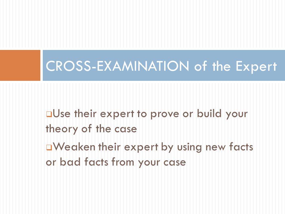 CROSS-EXAMINATION of the Expert