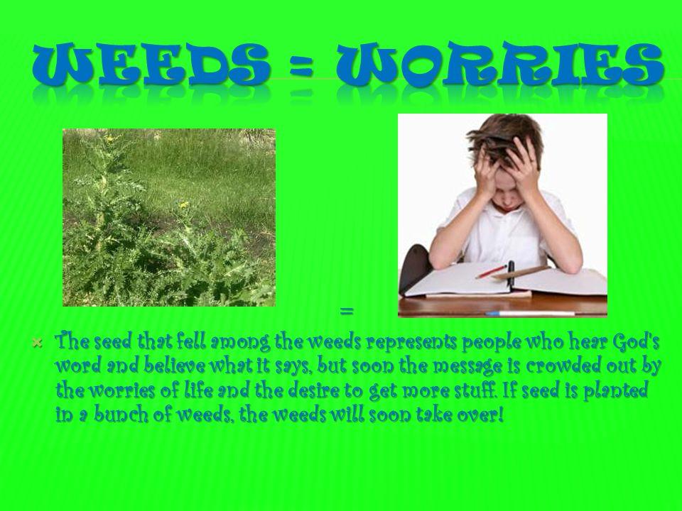 Weeds = worries =
