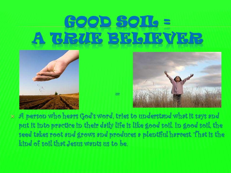 Good soil = a true believer
