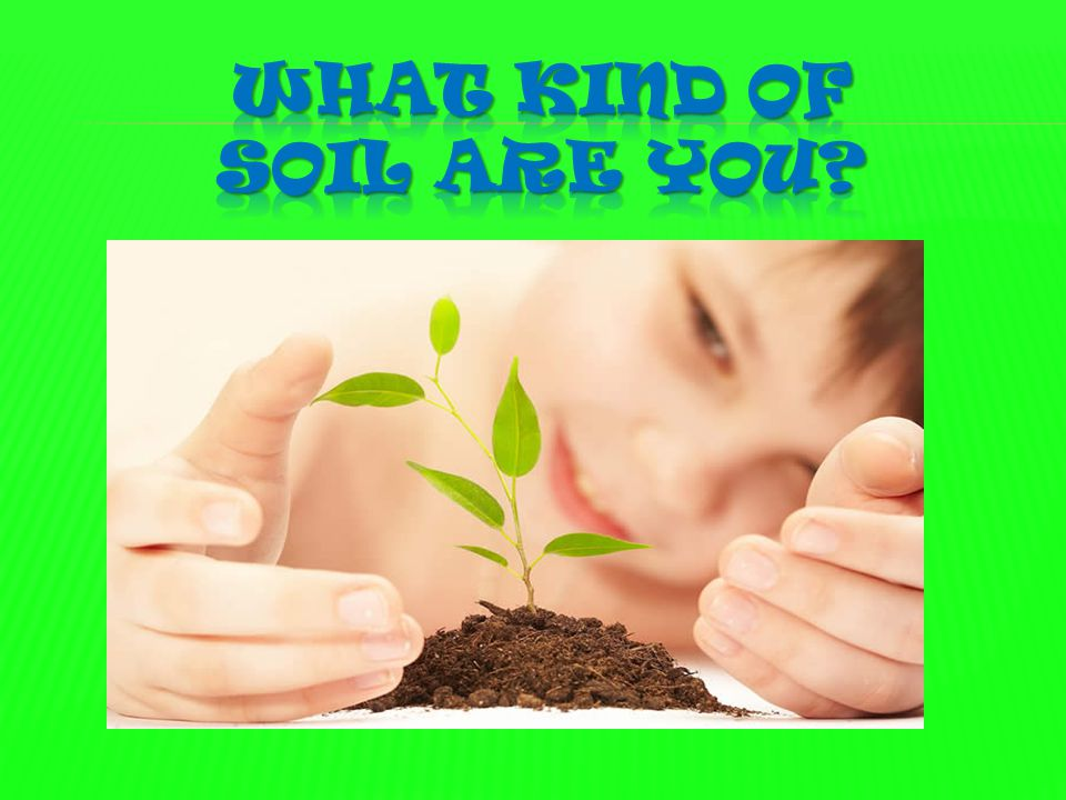 What kind of soil are you