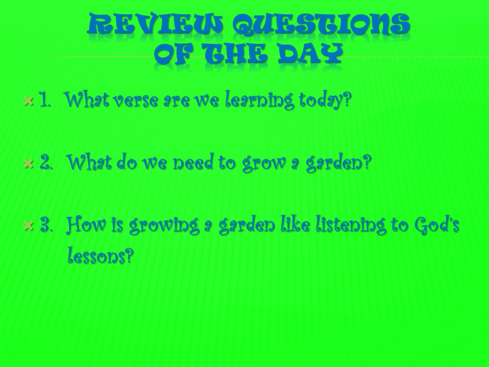 Review Questions of the day