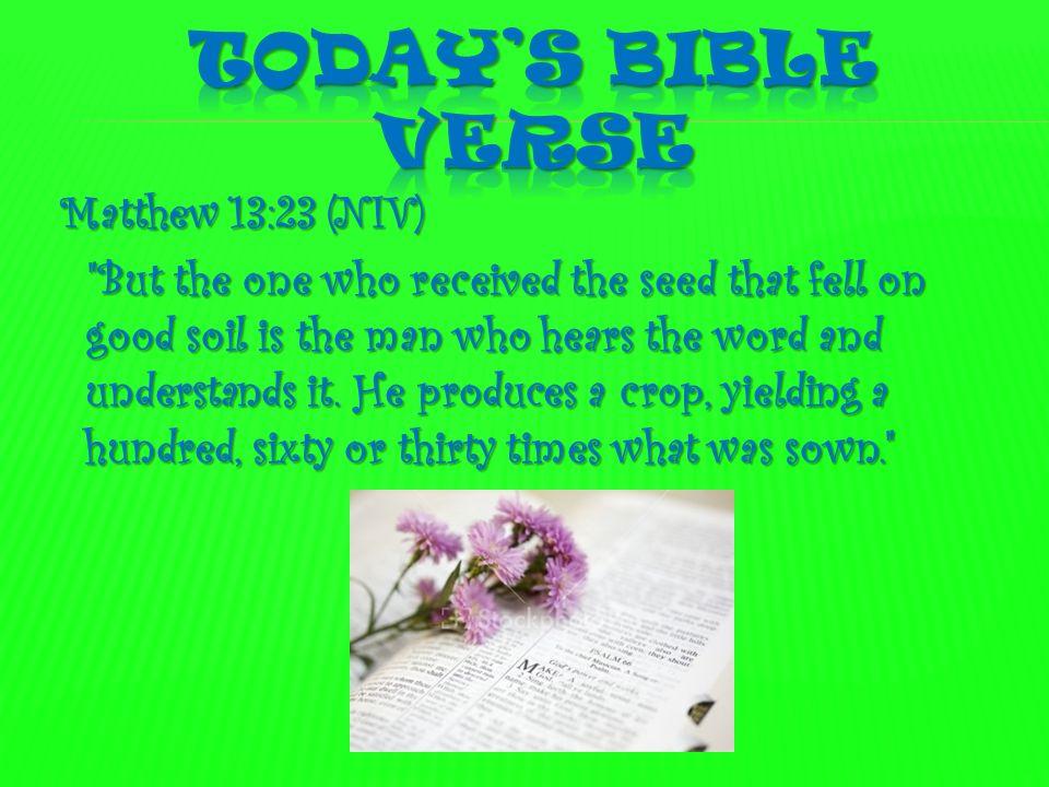 Today's Bible verse Matthew 13:23 (NIV)