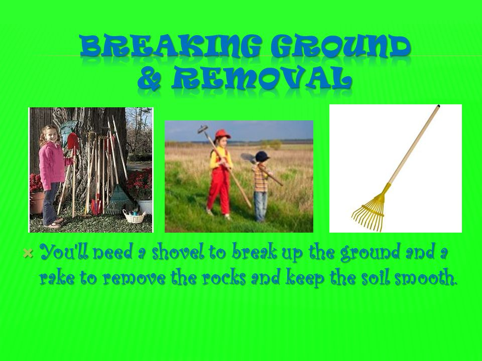 Breaking Ground & removal
