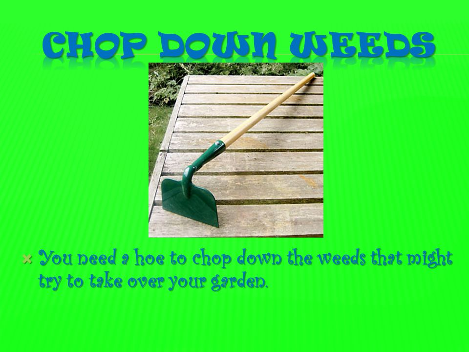 Chop down Weeds You need a hoe to chop down the weeds that might try to take over your garden.