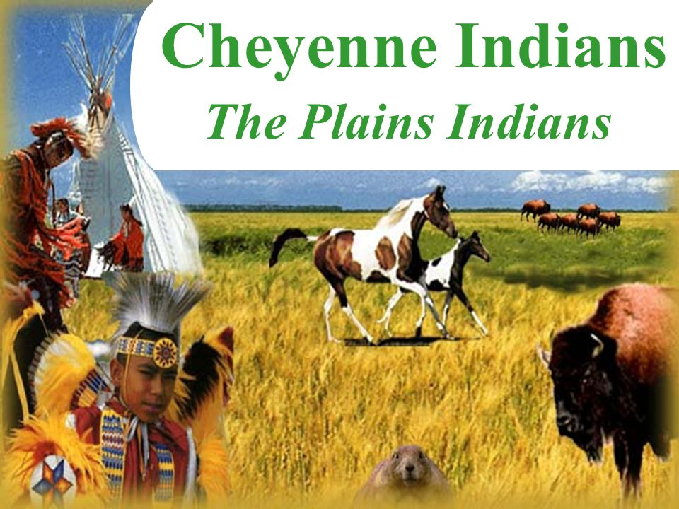 Cheyenne Indians The Plains Indians