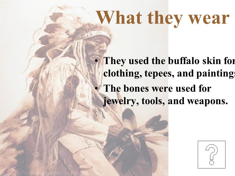 What they wear They used the buffalo skin for clothing, tepees, and paintings.