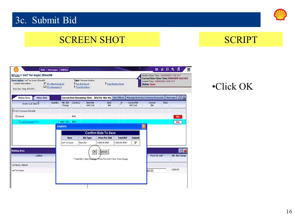 3c. Submit Bid SCREEN SHOT SCRIPT Click OK