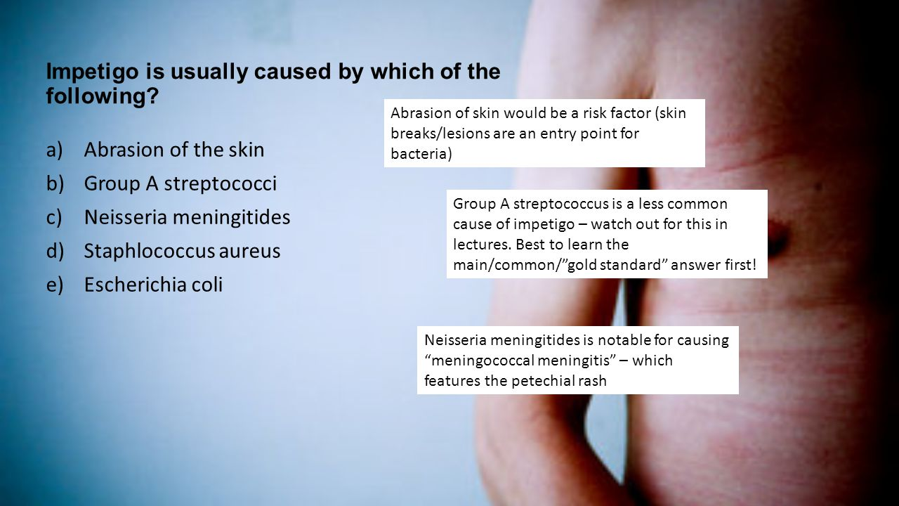 Impetigo is usually caused by which of the following
