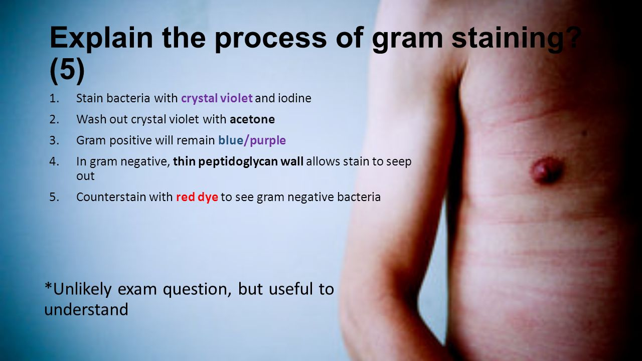 Explain the process of gram staining (5)
