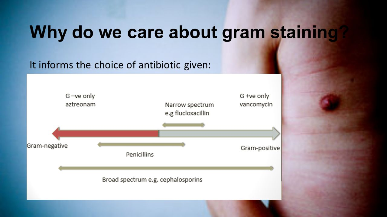 Why do we care about gram staining