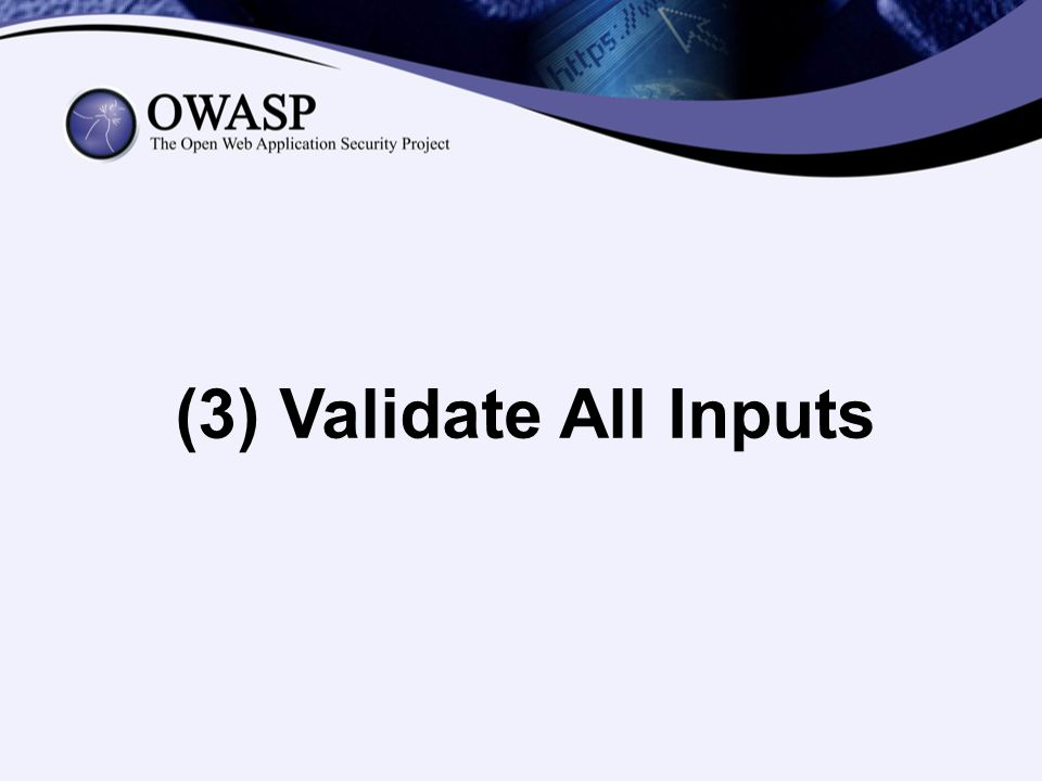 (3) Validate All Inputs