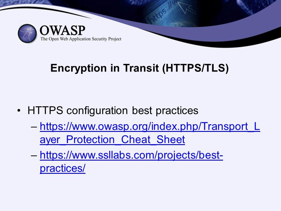 Encryption in Transit (HTTPS/TLS)