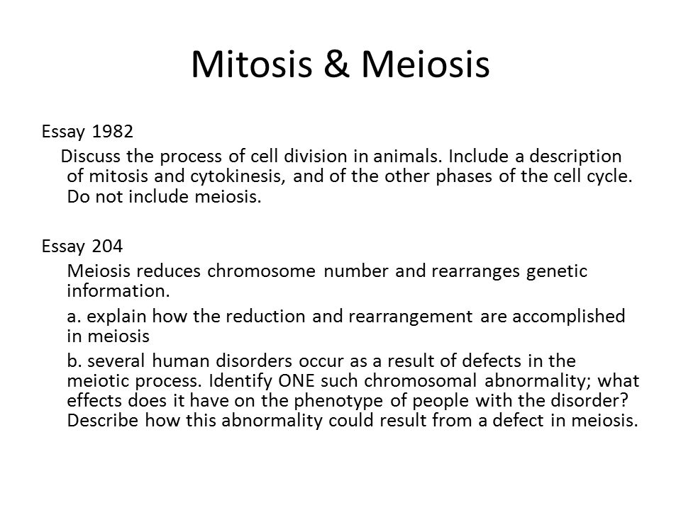 BIO 101 The Process Of Mitosis.