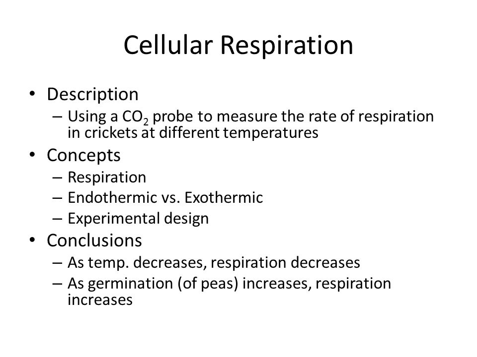 Cellular Respiration Description Concepts Conclusions