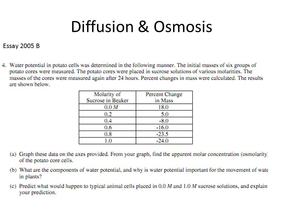 Osmosis essay