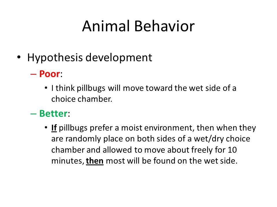 Animal Behavior Hypothesis development Poor: Better:
