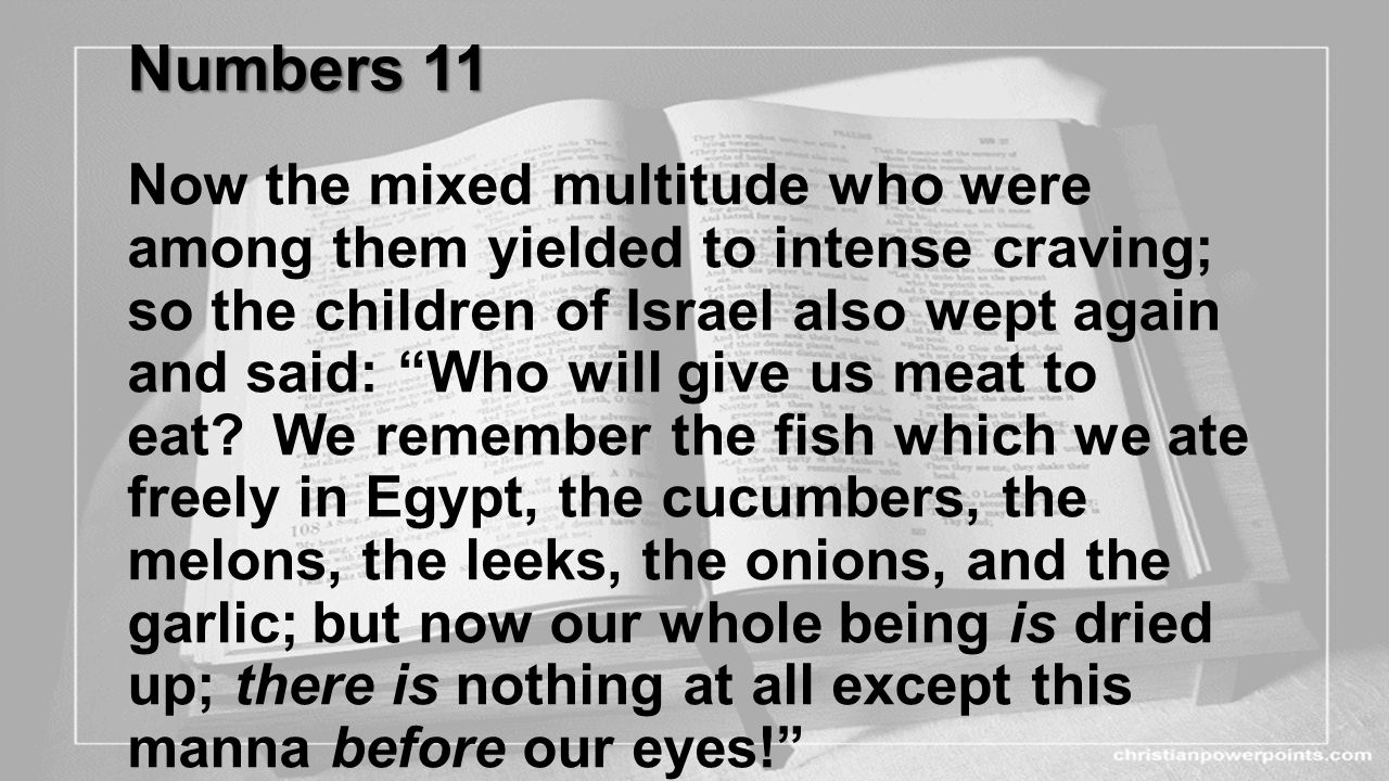Numbers 11 Now the mixed multitude who were among them yielded to intense craving; so the children of Israel also wept again and said: Who will give us meat to eat.