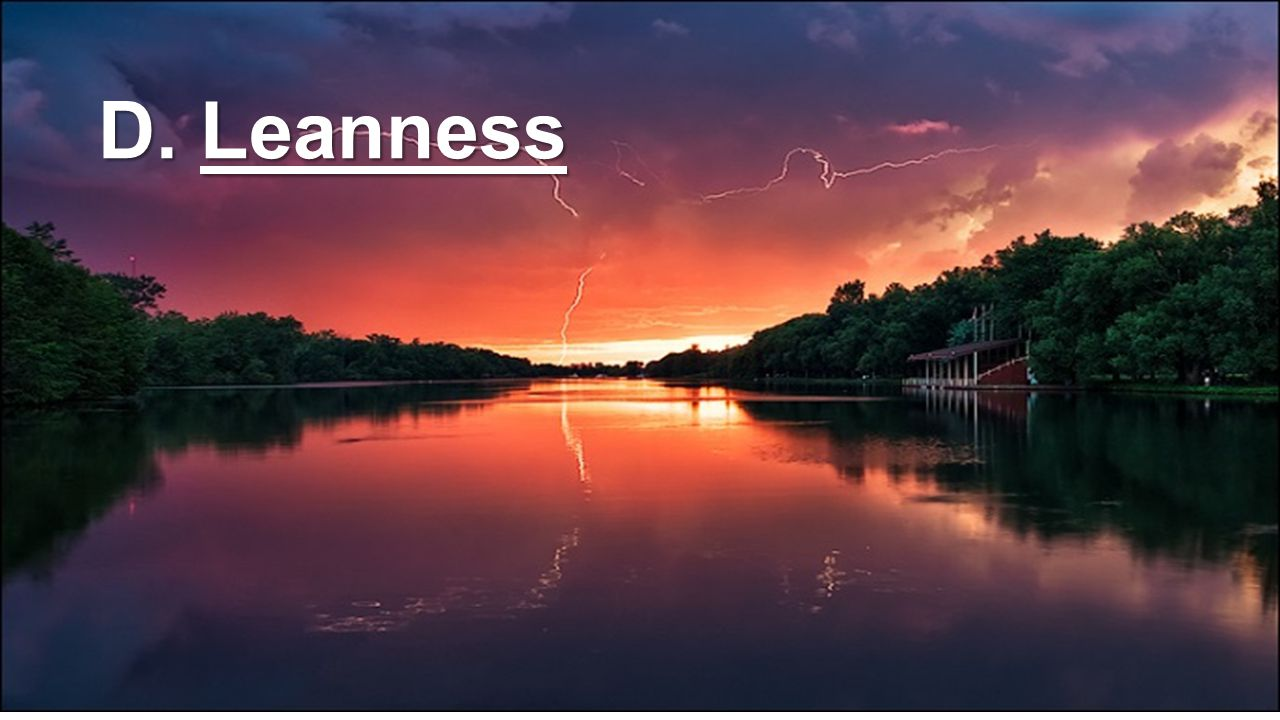 D. Leanness