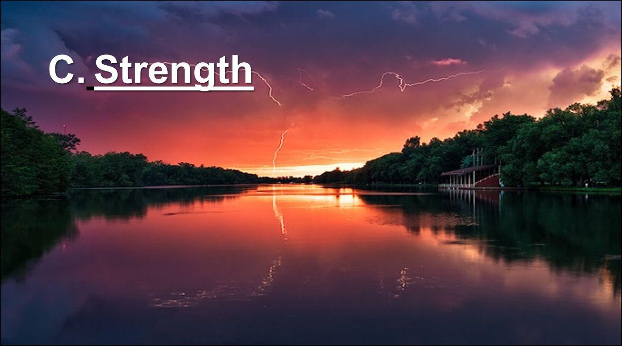 C. Strength