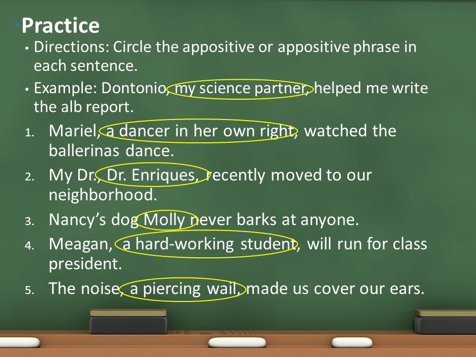 Practice Directions: Circle the appositive or appositive phrase in each sentence.