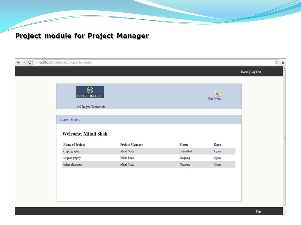 Project module for Project Manager