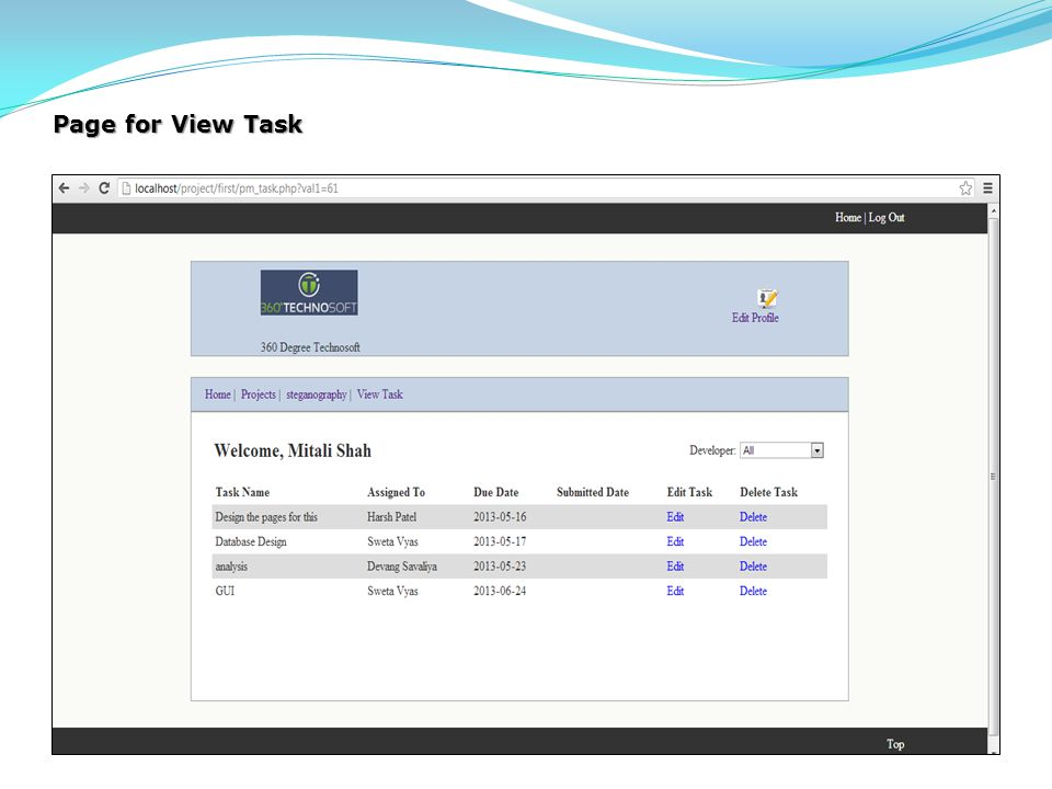 Page for View Task