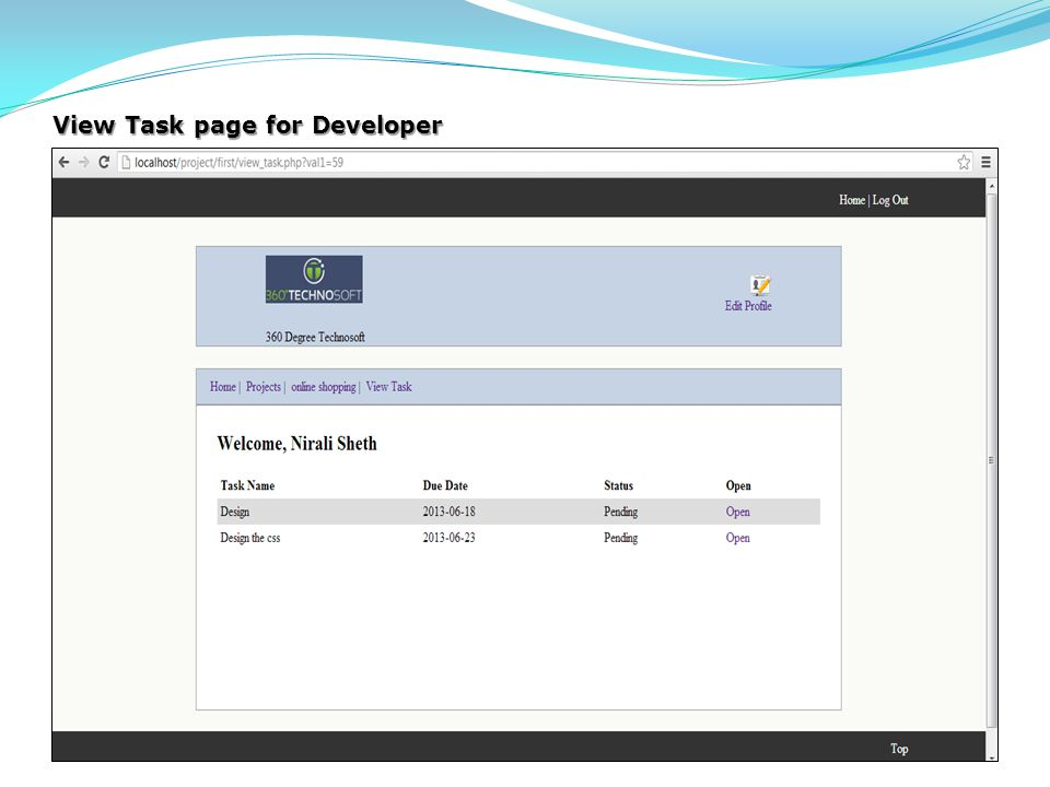 View Task page for Developer
