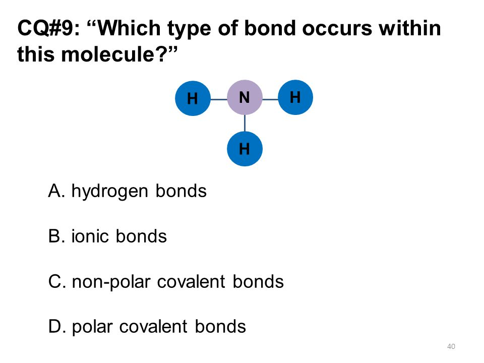 CQ#9: Which type of bond occurs within this molecule