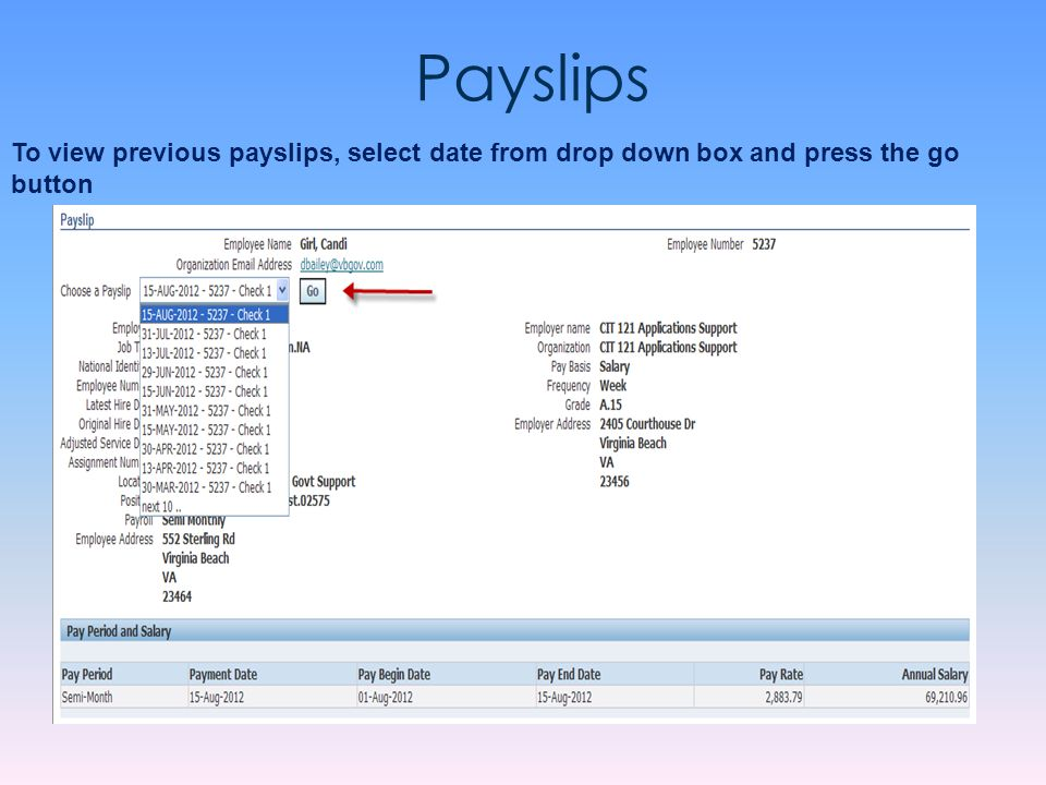 Payslips To view previous payslips, select date from drop down box and press the go button.