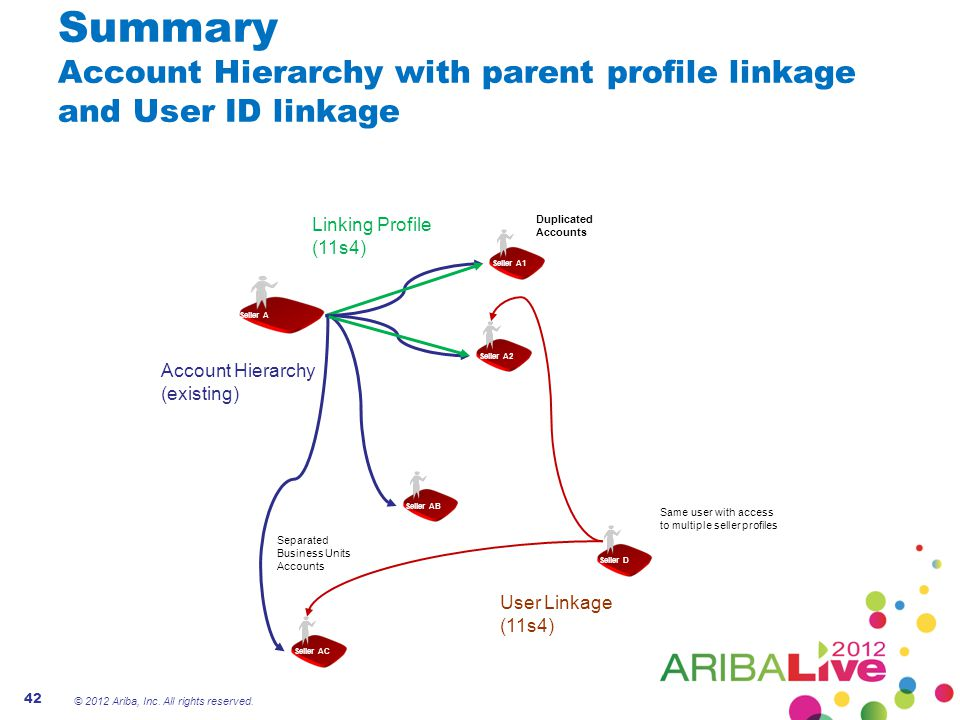 Summary Account Hierarchy with parent profile linkage and User ID linkage