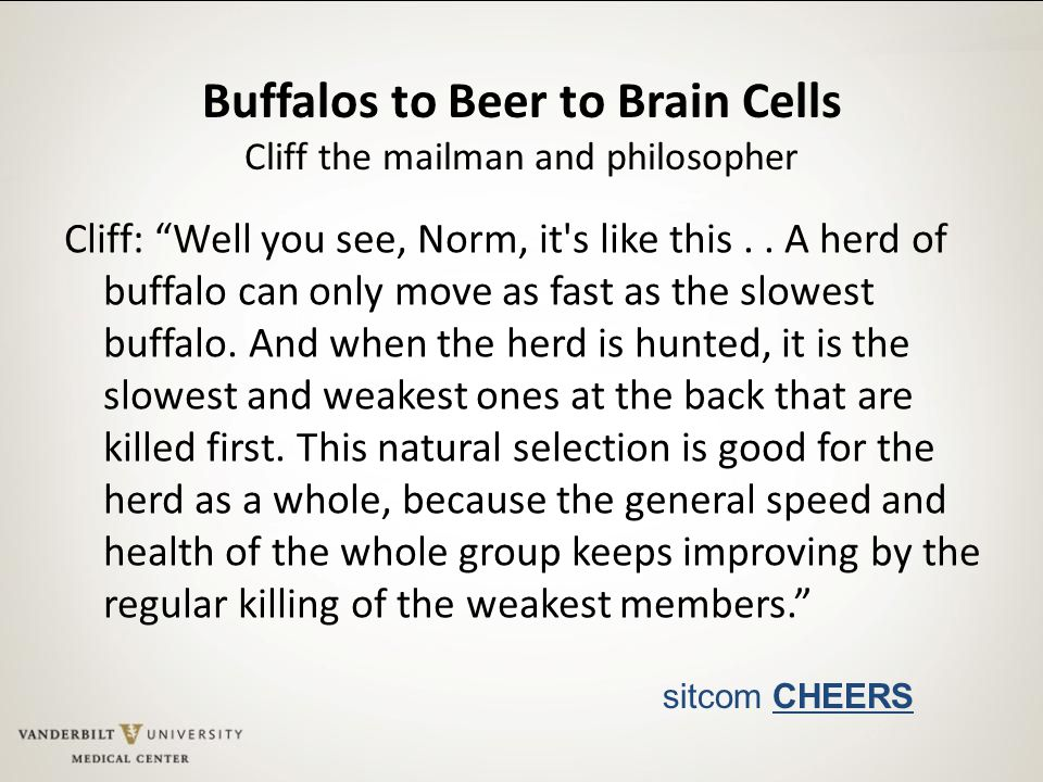 Buffalos to Beer to Brain Cells Cliff the mailman and philosopher