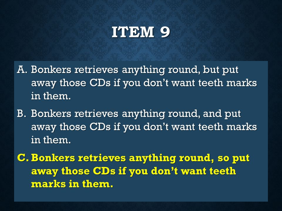 Item 9 Bonkers retrieves anything round, but put away those CDs if you don't want teeth marks in them.
