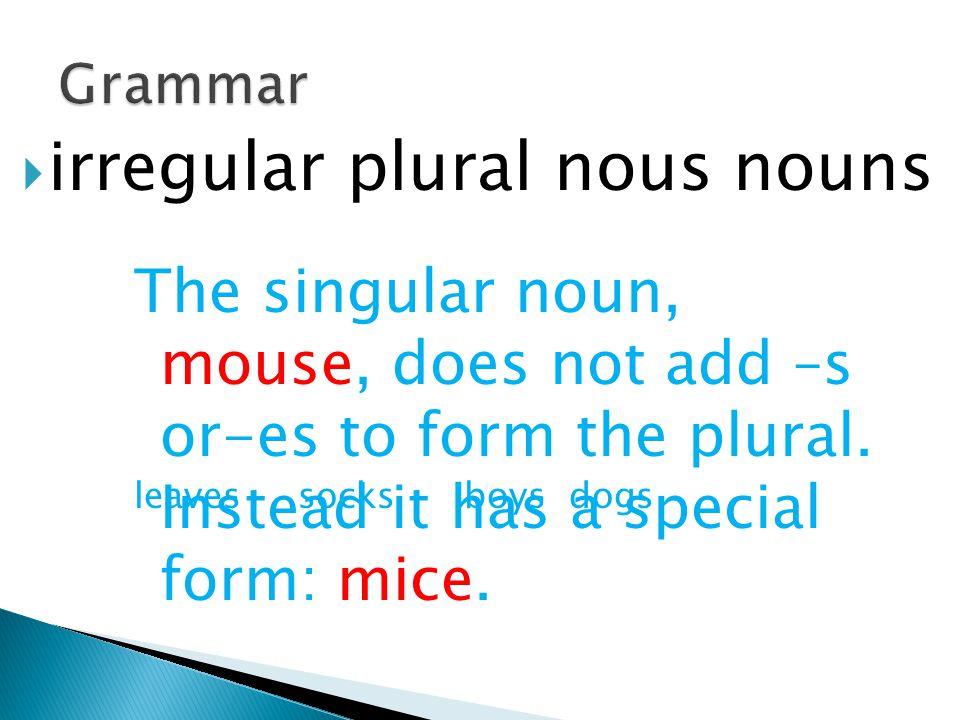 irregular plural nous nouns