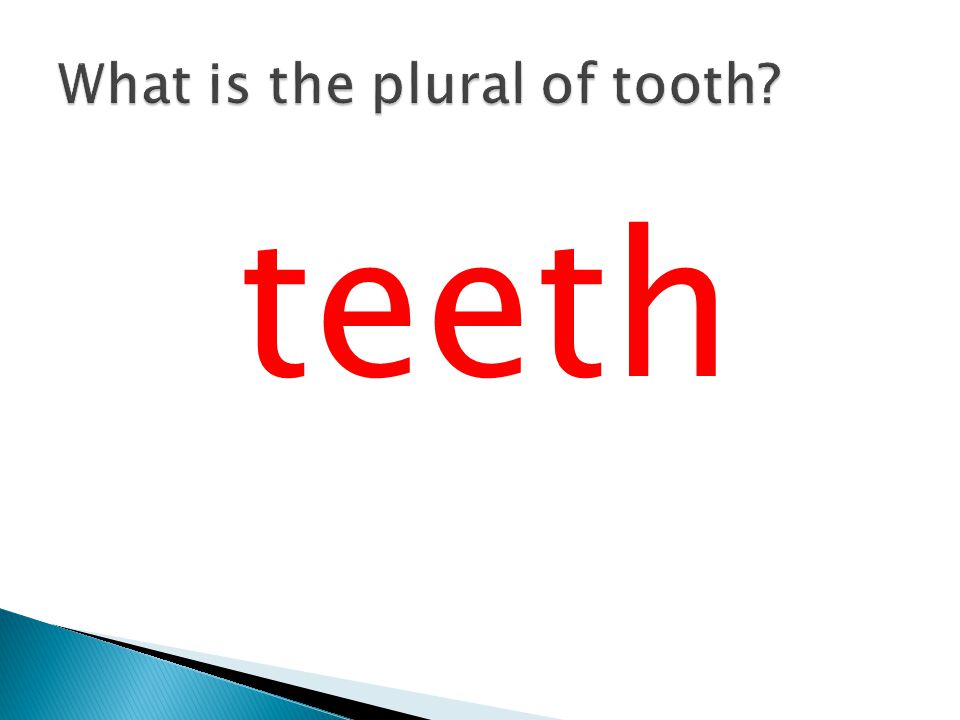 What is the plural of tooth