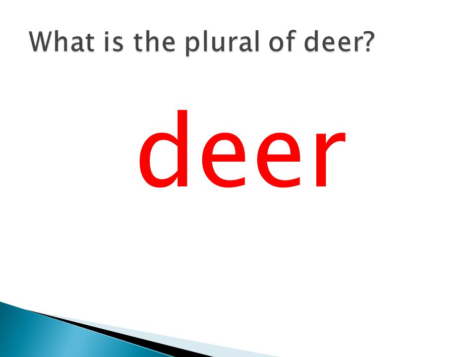 What is the plural of deer