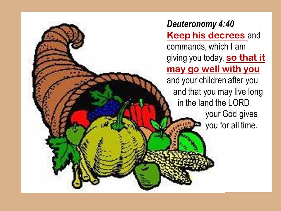 #10 08 August 2014. Deuteronomy 4:40.