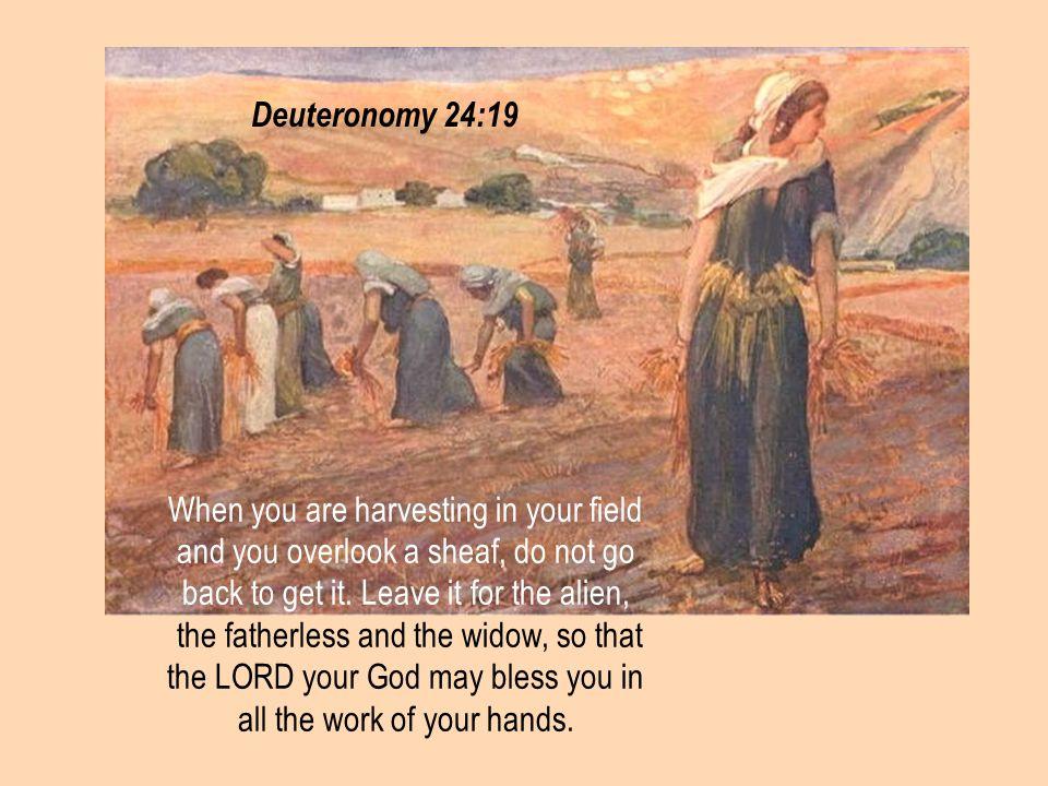 #10 08 August 2014. Deuteronomy 24:19.