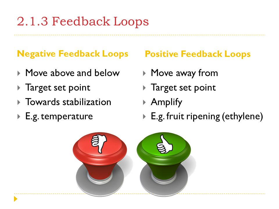 2.1.3 Feedback Loops Move above and below Target set point