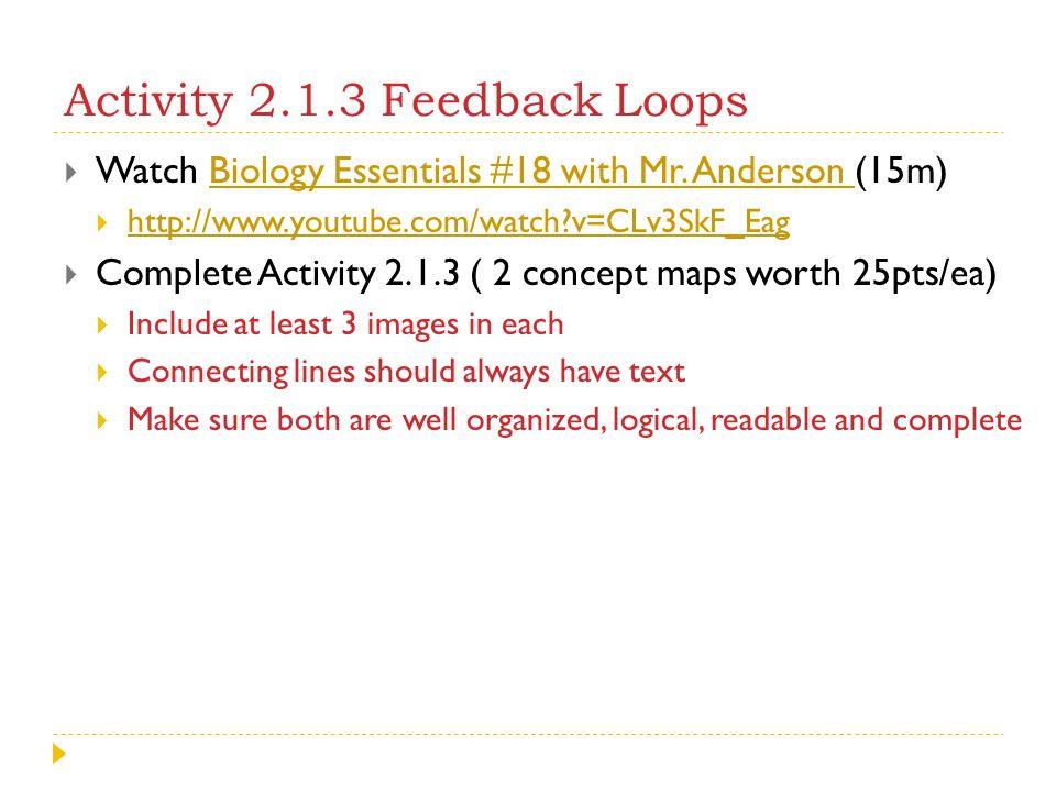 Activity 2.1.3 Feedback Loops
