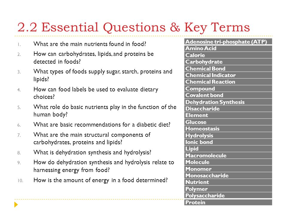 2.2 Essential Questions & Key Terms